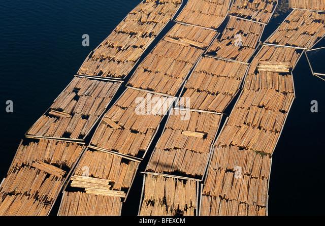 Luftbild des Log boomt in den Katalysator Papierfabrik, Crofton, Vancouver Island, British Columbia, Kanada. Stockbild