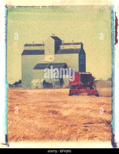 Ernte mit Mähdrescher, Morinville, Alberta. (künstlerische Polaroid Transfer-Technik) Stockbild