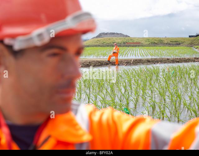 Arbeitnehmer In Wasserbetten Reinigung Stockbild