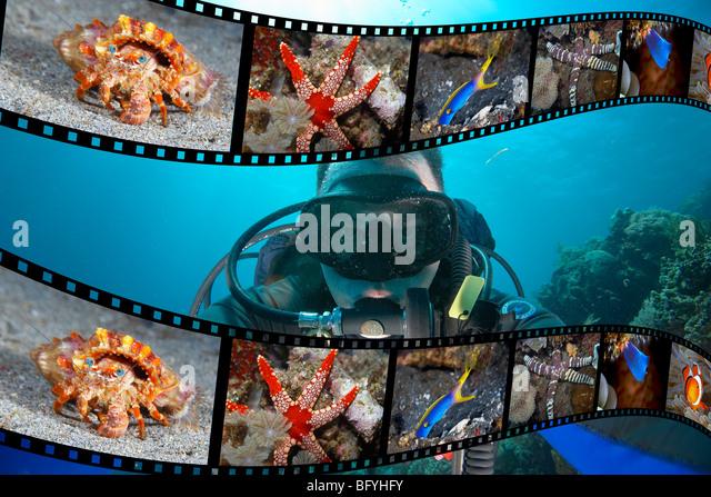 Taucher und Film Strip Unterwasser Fotos Stockbild