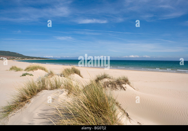 Bolonia Beach, Costa De La Luz, Andalusien, Spanien, Europa Stockbild