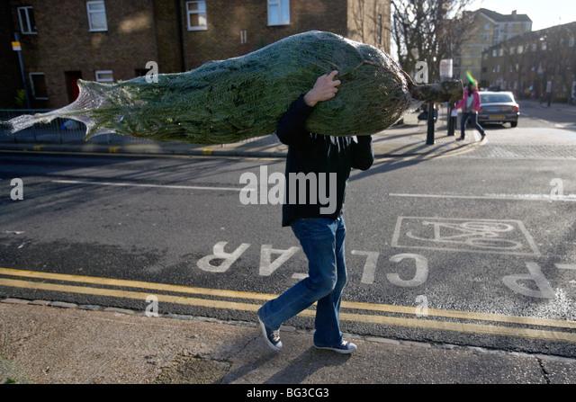ein Mann, der einen Weihnachtsbaum an Columbia Road Flower Market in London gekauft hat Stockbild
