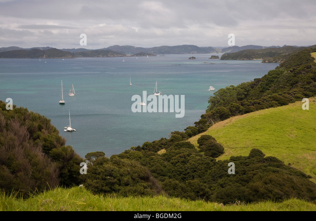 Urupukapuka Insel in der Bucht von Island, Neuseeland, Nordinsel Stockbild