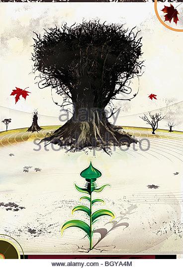 Toter Baum im Feld Stockbild