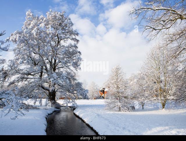 Winter am Abinger Hammer, Surrey, UK. Bodenbearbeitung Bourne. Stockbild