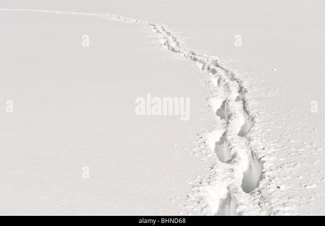 Fußweg durch den Tiefschnee. Stockbild