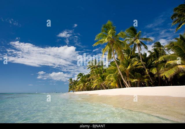 Isla Saona, Dominikanische Republik Stockbild