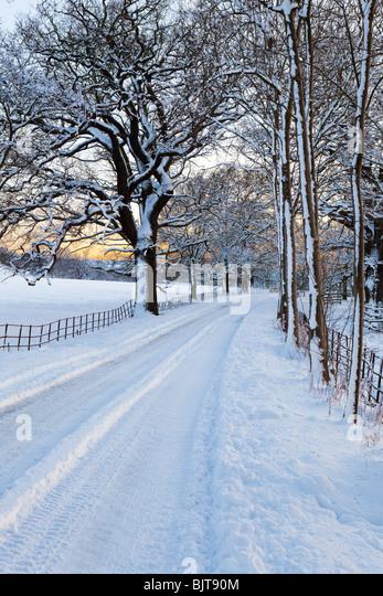 Dämmerung fallen auf eine eisige, Schnee bedeckte Cotswold Lane durch Parklandschaft am Stanway, Gloucestershire Stockbild