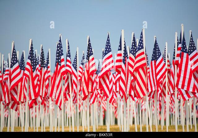 Eine Anzeige von vielen Flaggen der Vereinigten Staaten von Amerika Stockbild