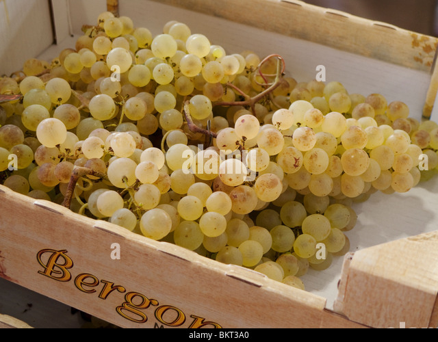 Weißen Trauben in Holz-Box zu verkaufen. Stockbild