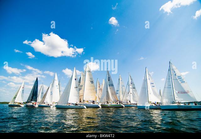 Mehrere Segelschiffe Stockbild