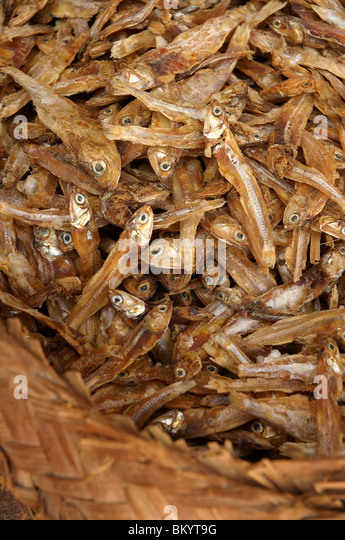 Asiatische Trockenfisch auf Märkten Stockbild