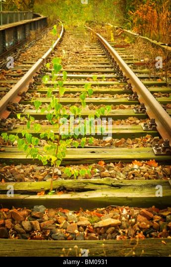 Alt Berliner S-Bahn-Eisenbahnlinie, unbenutzt seit den 80er Jahren Stockbild