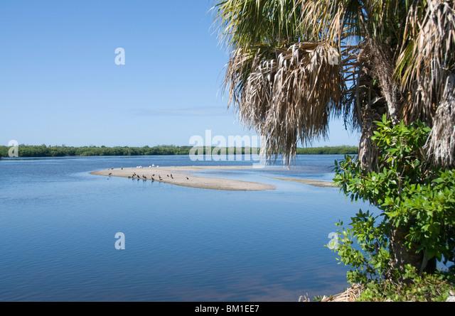 """J.n. """"Ding"""" Darling Wildlife Reserve, Sanibel Island, Golfküste, Florida, Vereinigte Staaten von Stockbild"""
