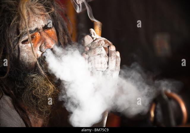 Naga Sadus in Haridwar Kumbh Mela 2010. Indien Stockbild