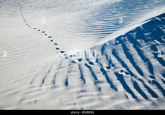 Fußspuren im Sand in der Wüste Stockbild