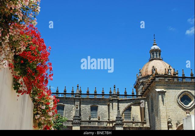Die Kathedrale, Jerez De La Frontera, Provinz Cadiz, Andalusien, Spanien, Westeuropa. Stockbild