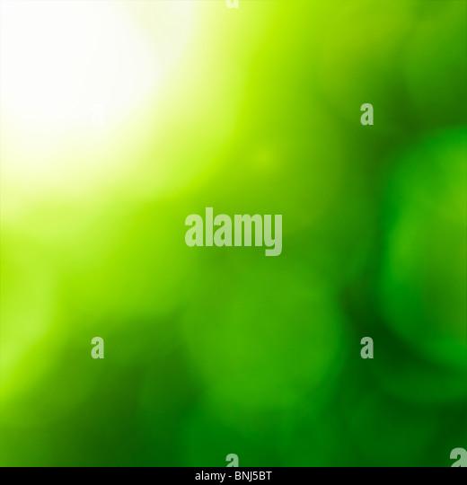 Abstrakte Natur Hintergrund (grüne Bokeh). Stockbild