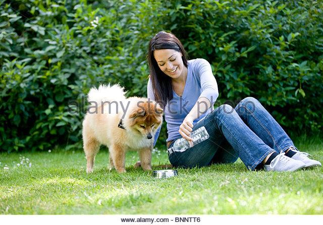 Eine Frau sitzt auf dem Rasen, Gießen ihrem Hund einen Schluck Wasser Stockbild