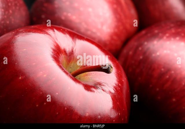 Nahaufnahme der frische dunkle rote Äpfel Stockbild