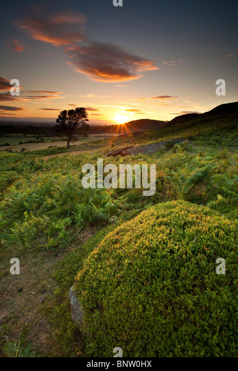 Summer Sunset, Warren Moor in der Nähe von Kildale, North York Moors National Park Stockbild
