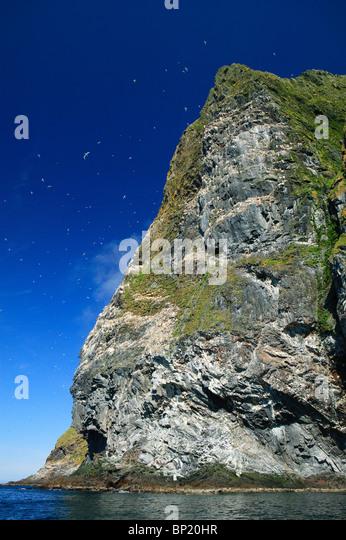 Die Klippe Rundebranden an der südwestlichen Seite der Insel Runde, Norwegens. Stockbild
