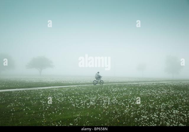 Junge Reiten Fahrrad durch einen nebligen Feld Stockbild