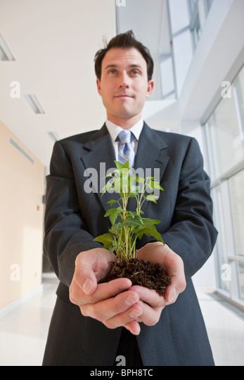 Geschäftsmann hält eine Pflanze Stockbild