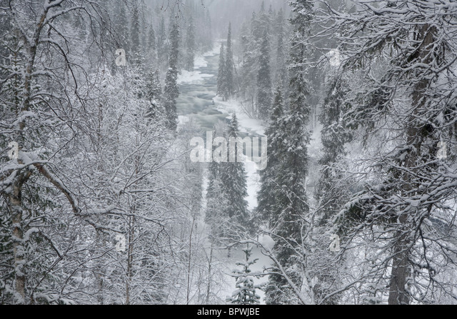 Die Kitka Fluss in Oulanka-Nationalpark, Finnland. Stockbild