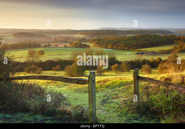 Morgensonne scheint über den North Downs, Newlands Ecke Stockbild