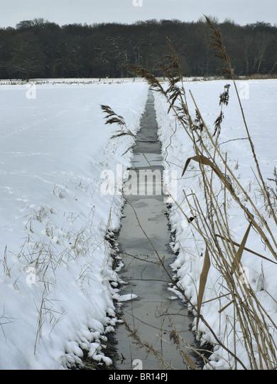 Entwässerungsgraben auf einem Feld im Winter in der Nähe von Barum, Elbmarsch, Deutschland. Stockbild