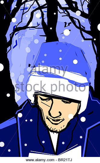 Schneefall Stockbild