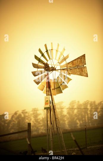 Alte Windmühle des Landes. Stockbild