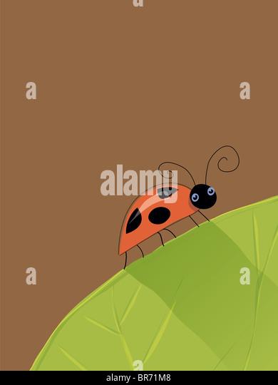 Ein Beispiel für einen Marienkäfer auf einem Blatt Stockbild