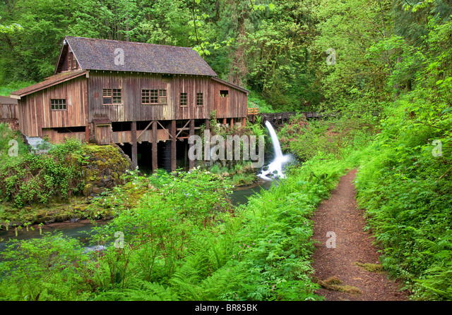 Cedar Creek Grist Mill im Frühjahr mit Pfad. Woodland, Washington Stockbild