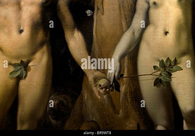 Cornelis van Haarlem The Fall der Mann Adam Eva Garden Of Eden Apfel Baum Museum Niederlande Stockbild