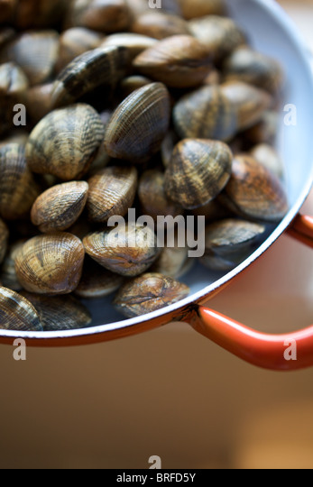Herzmuscheln in eine Pfanne, Restaurant St Clements, st.leonards am Meer, East Sussex. Stockbild
