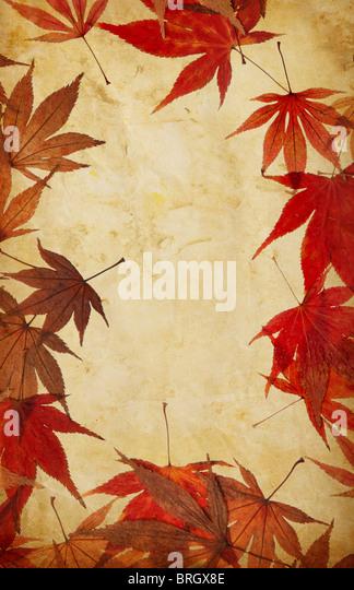 Herbst Blatt Grunge Hintergrund Stockbild