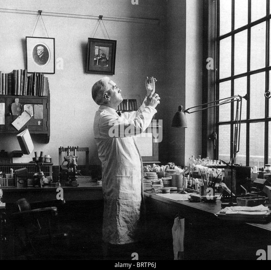 SIR ALEXANDER FLEMING (1881-1955) schottische Biologe / Pharmakologe in seinem Labor an Str. Marys Hospital, Paddington, Stockbild