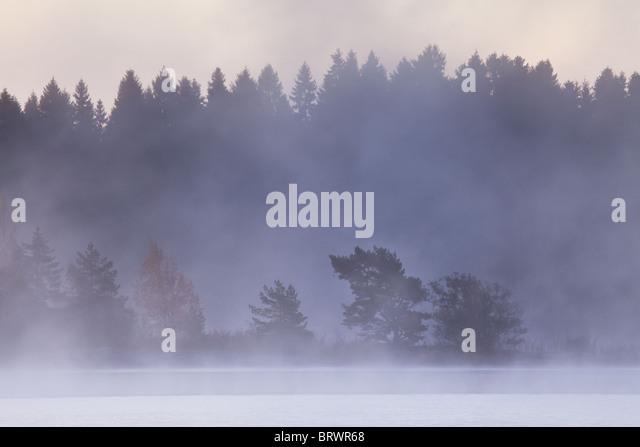 Am frühen Morgennebel nach einer frostigen Nacht in den See Vansjø, Østfold Fylke, Norwegen. Stockbild