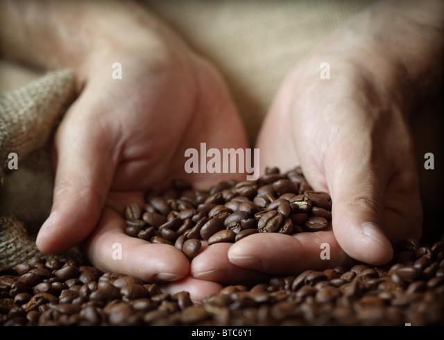Hand halten Kaffeebohnen Stockbild