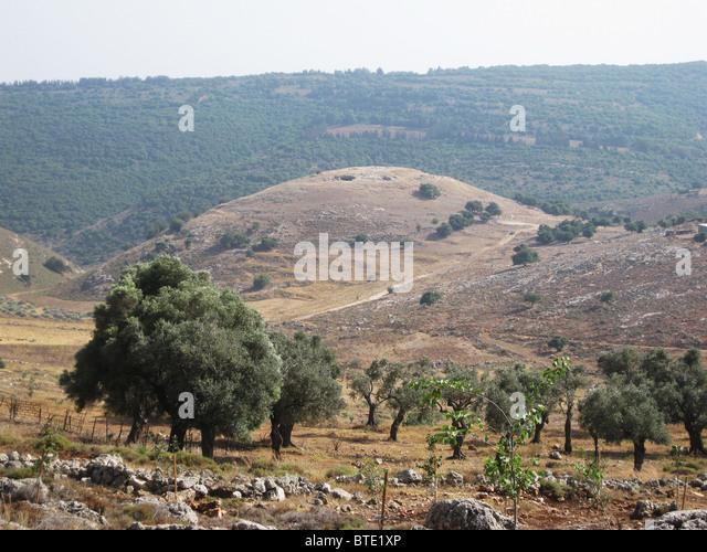 5499. Yodphat, alte Stadt im südlichen Galiläa. Yodphat war eines der Zentren des großen Aufstandes Stockbild