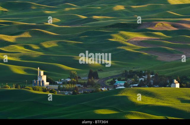 Palouse Land Weizenfelder und die Stadt Steptoe aus Steptoe Butte, Washington. Stockbild
