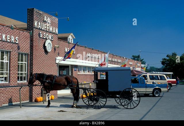 Old fashioned Amish Vogel Trainer Pferd Trainer Pferd Parkplatz Landwirtschaft Religion Christentum Dutch Country Stockbild
