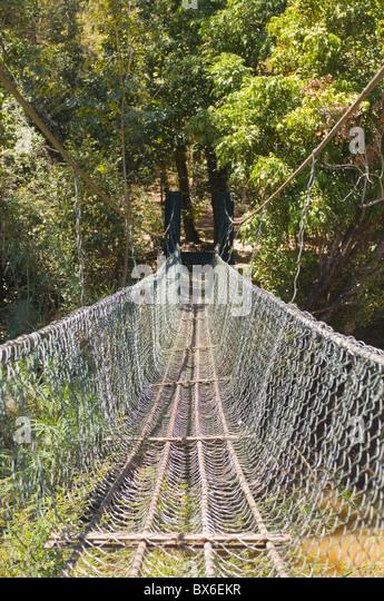 Fußgängerbrücke in Ankarafantsika Nationalpark, Madagaskar, Afrika Stockbild