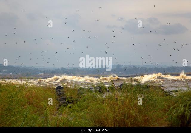 Kintambou-Stromschnellen, Kongo, Republik Kongo, Afrika Stockbild