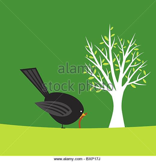 Frühe Vogel fängt die Wurm-Abbildung Stockbild