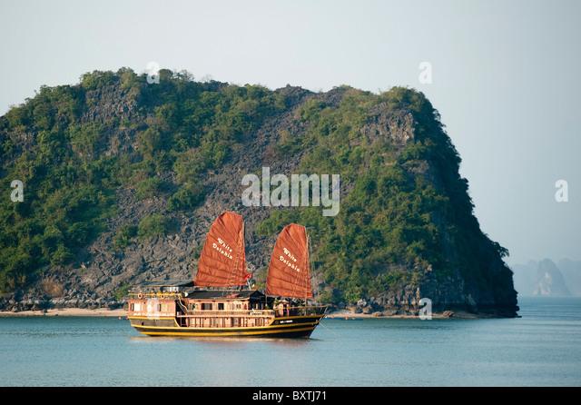Junk-e-Segeln in Halong Bucht, Vietnam Stockbild