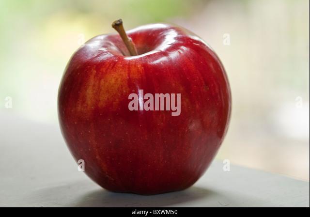 Einen ganz roten Apfel in natürlicher Umgebung Stockbild