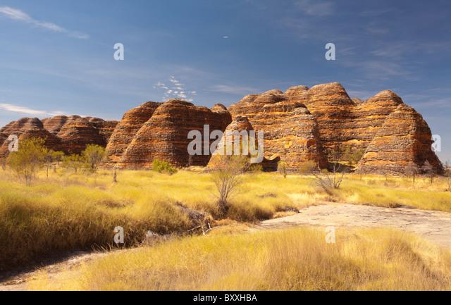 Konischen Felsformationen an der Bungle Bungles Purnululu National Park, Kimberley, Western Australia Stockbild